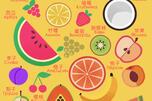 Fruits Visual Dictionary