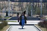 Far East Federal University