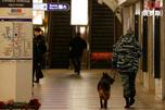 Petersburg metro police