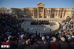 Palmyra CN