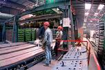 目前,工厂已雇佣员工150人,生产一线工人全部来自中方。图片来源:塔斯社