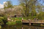 """《透视俄罗斯》推出俄罗斯境内最""""春光明媚""""7处景观。图片来源:Lori/Legion Media"""