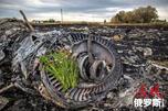 马航客机在乌克兰东部坠毁现场。图片来源:俄新社