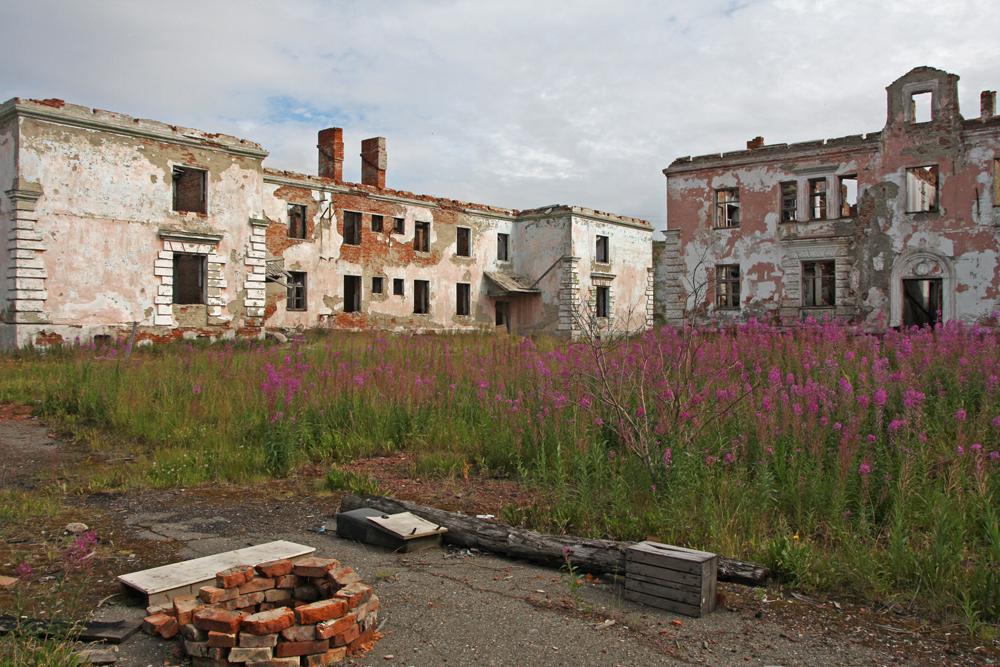 Anche se gran parte della città è cambiata dagli anni del gulag, una cosa rimane la stessa, l'Ivan Chai, una pianta selvatica che cresce nella campagna intorno a Vorkuta