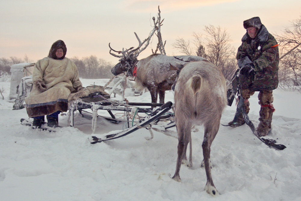 The reindeer herders of Russia's Kola Peninsula struggle in solitude against the Polar night, the wind and fatigue. For all intents and purposes, there is no light at all from Dec. 10-Jan. 3.