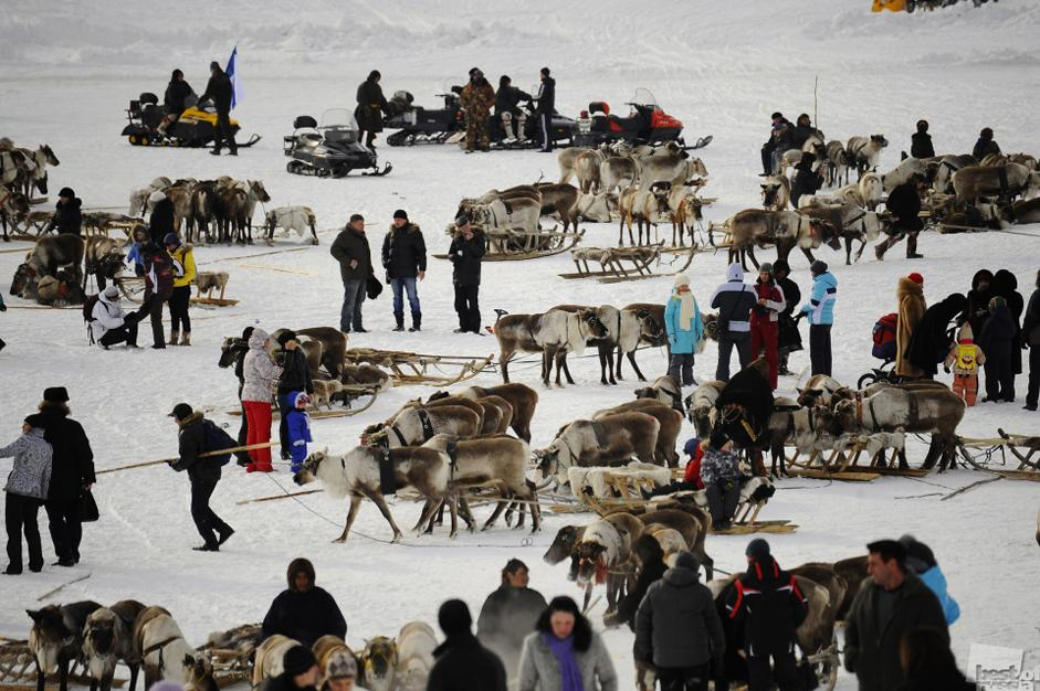 Best of Russia 2012 is an acclaimed photo-contest held in Russia annually. This year it marks its 5th anniversary. // Reindeer-breeders on the frozen Poluy river, Yamalo-Nenetsky Region.