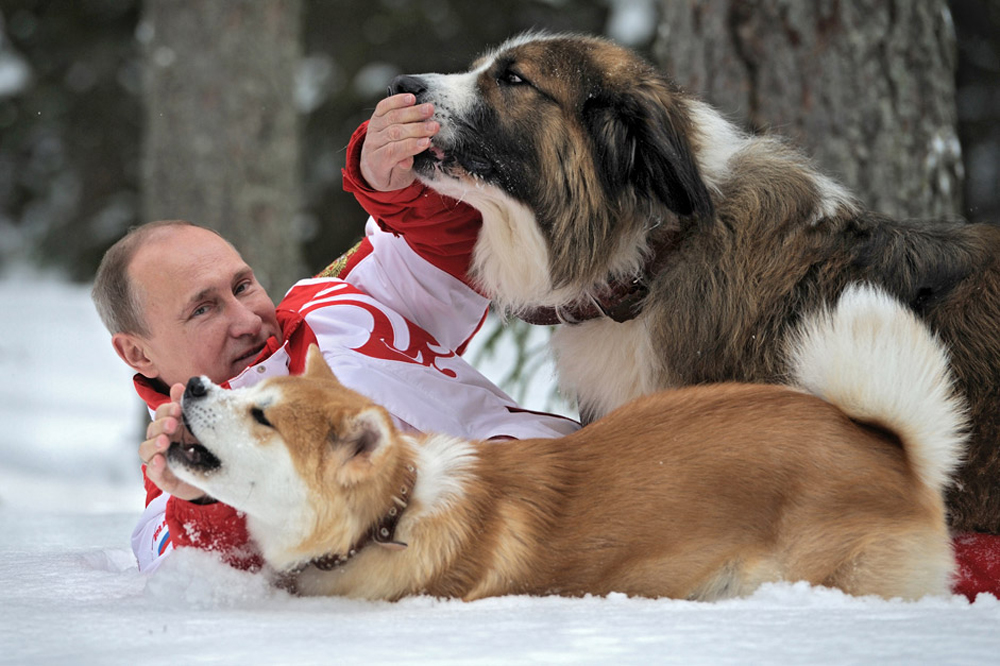 President Vladimir Putin and his dogs, Buffy the Bulgarian Shepherd and Yume the Akita Inu, walk in the Moscow Region.