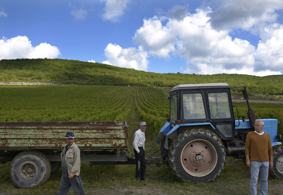 Oparin has 50 hectares of land: not just vineyards, but a field, a pond, two restaurants, and a hotel: everything for lovers of eco - and agritourism. There are 20 permanent workers on the farm.