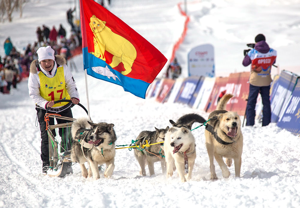 The race organizers took the decision to return it to its former status. In 2014, the mushers have to cross 1,300 km, while in 2015 the distance will be over 2000 km.