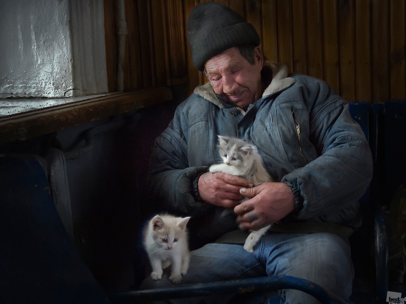 But can you call them domesticated if you have no home? // A homeless man with kittens; nothing human is unfamiliar