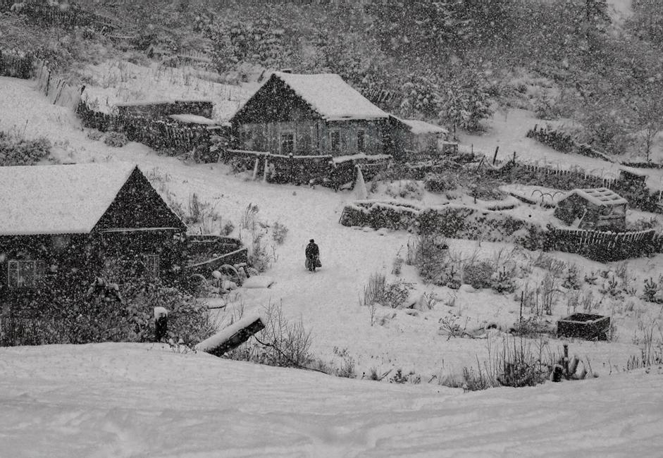 """""""Snowfall."""" Taken during the first snow in a small village surrounded by dense forest not far from the Yenisei. A strange figure entered the frame as if on cue."""