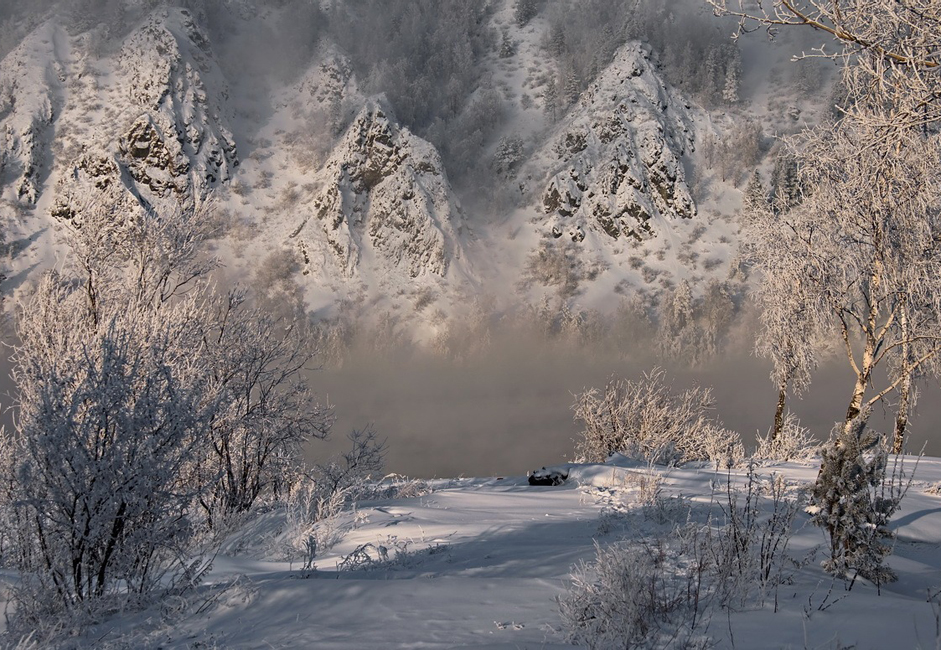 """Winter reveries."" Taken on the banks of the Yenisei in the region of Divnogorsk. In extreme cold."