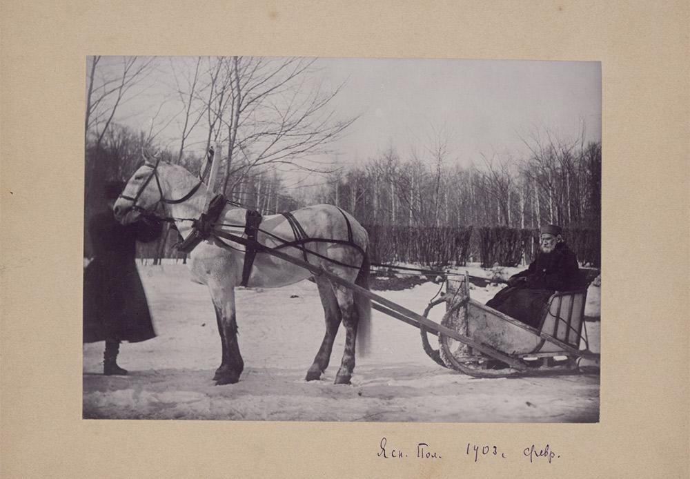 Τα περισσότερα φωτοπορτρέτα του Τολστόι έγιναν με πρωτοβουλία της Σοφίας. Η φωτογραφική μηχανή ήταν παρούσα στα σημαντικά γεγονότα και την καθημερινή ζωή // Τολστόι σε έλκηθρο με άλογο, 1903, Γιάσναγια Πολιάνα. Φωτογραφία της Σοφίας Τολστόι