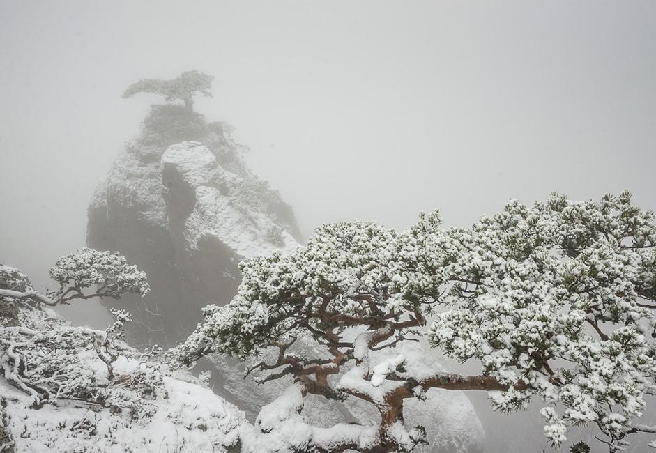 Una de las cumbres restantes de Demerdzhí. En su pico crece un pino extraordinario, cuya silueta recuerda los dinosaurios extintos. El fotógrafo comenta que tenía mucho miedo cuando tomaba esta foto, ya que en frente veía 20-30 centímetros de resalto y después al abismo, todo estaba lleno de nieve y hielo, y si se llega a resbalar no podría contarlo.