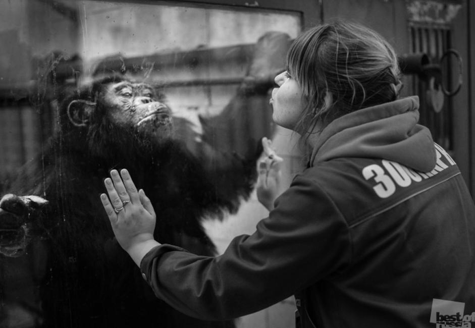 """Best of Russia"" is a photo project, unprecedented in scale, the project's goal is to authentically capture a year in the life of Russia in the most vivid and creative photographs. // A Zoo staff worker, Chelyabinsk"