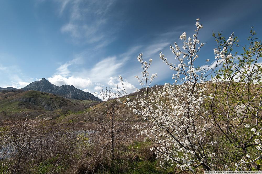 Spring in Crimea