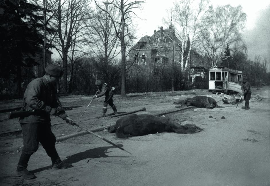 苏联工兵在柯尼斯堡街道上排雷。东普鲁士,德国,1945年4月。