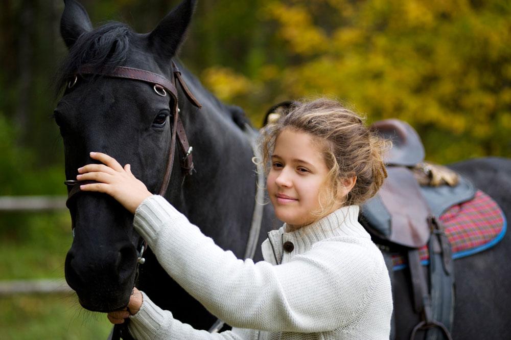 Russian Saddle horse