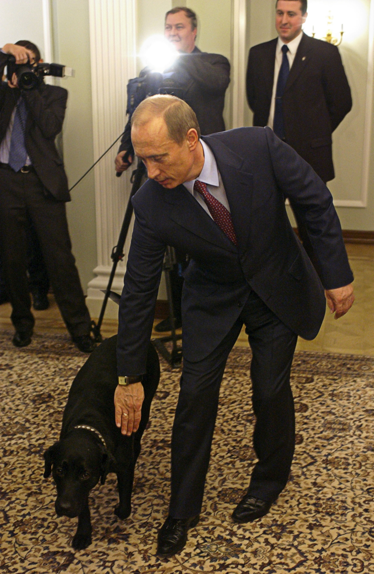 Putin dog 1 connie