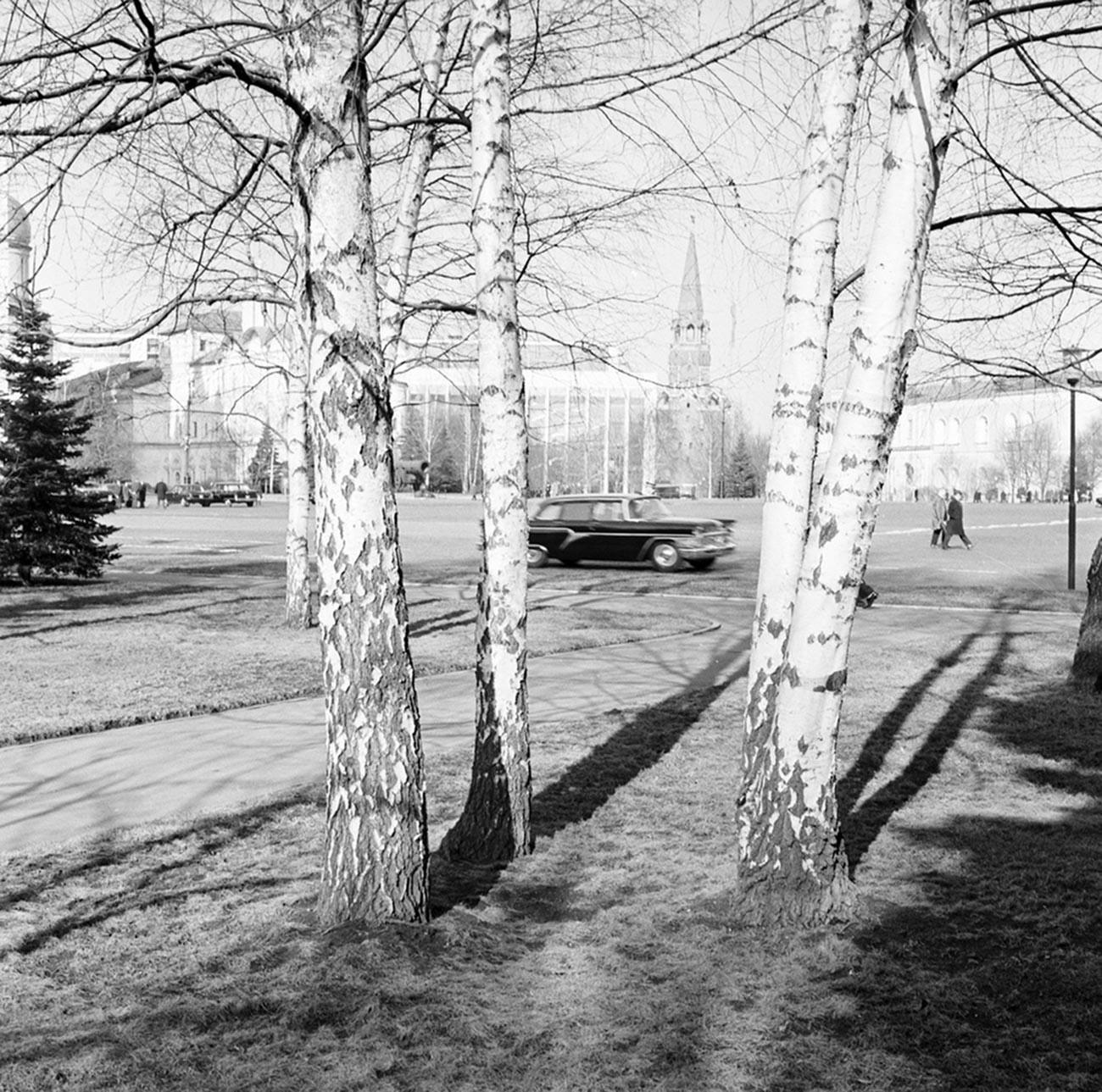 Spring in Kremlin