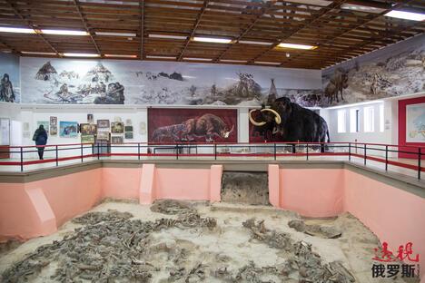 Kostenki museum