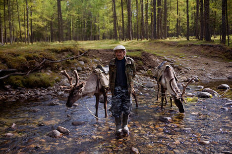 Tofalaria: How people and deer coexist in the Siberian taiga
