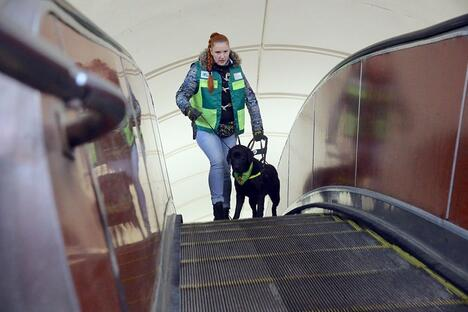 Assistance Dogs Training