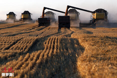 Combine harvesters work on a wheat field CN