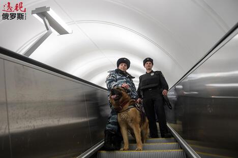 Dongs in metro