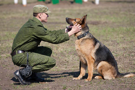 图片来源:俄罗斯国防部 / Press Photo