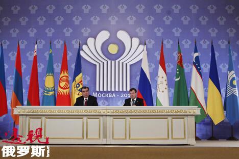 独联体峰会 图片来源:俄塔社