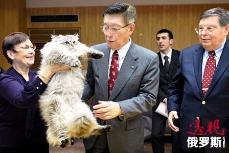 Norihisa Satake and Siberian cat CN