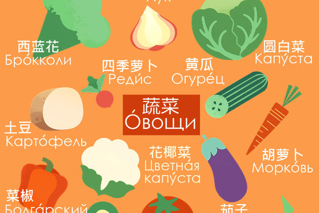 Vegetables Visual Dictionary