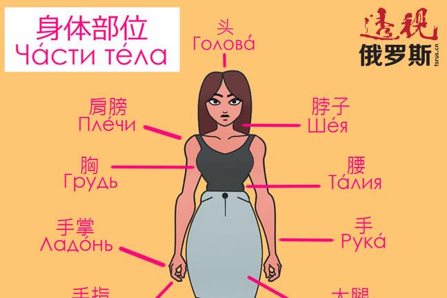 Body Visual Dictionary