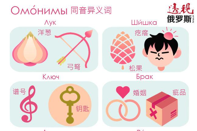 Homonyms Visual Dictionary