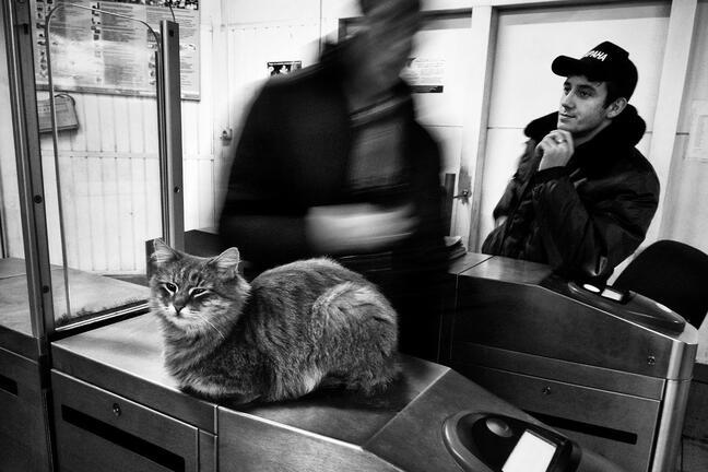 Moscow metro daily routine