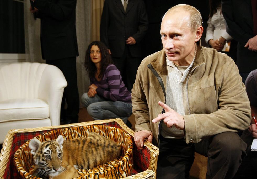 2008年,时任俄罗斯总理的普京收到作为生日礼物的一只乌苏里虎。图片来源:Aleksey Nikolskyi / 俄新社