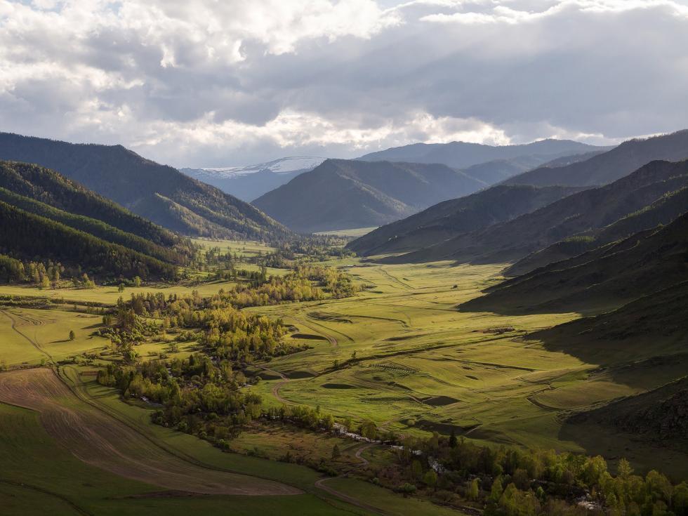 图片来源:Alexandr Leshenok