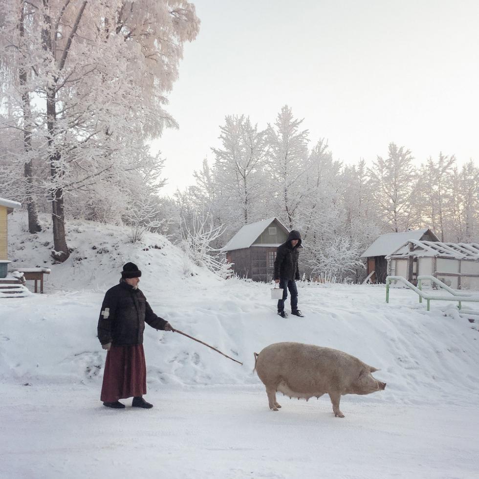 普斯科夫州杰多维奇。摄影:Dmitry Markov