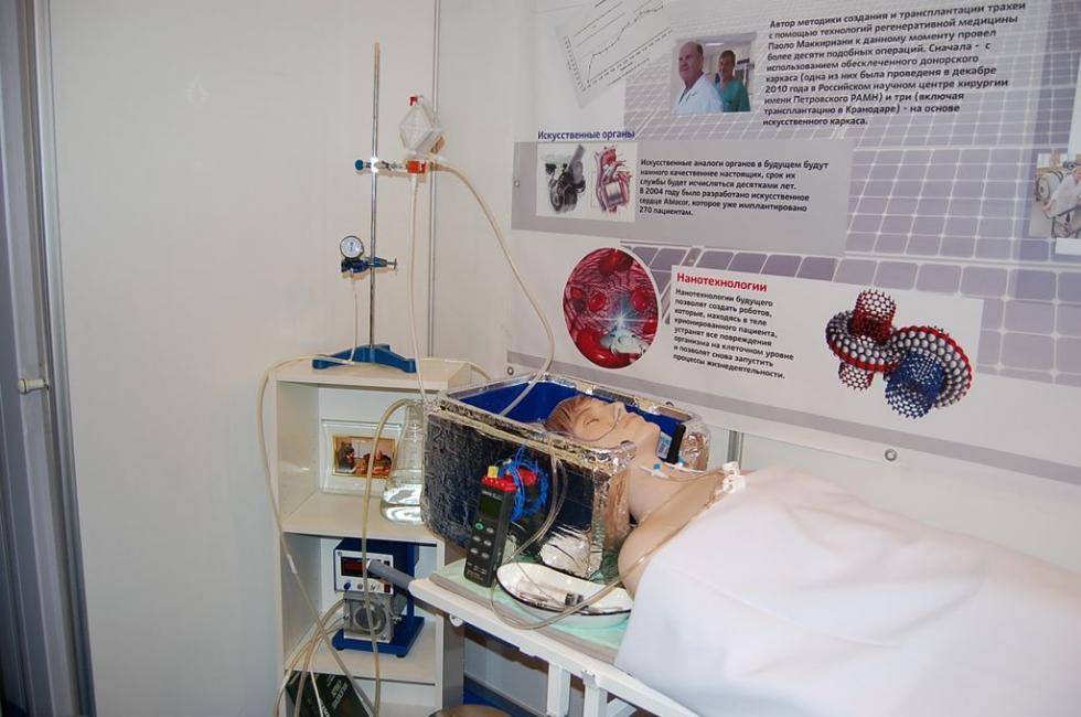 灌注手术的模拟。 图片来源: KrioRus