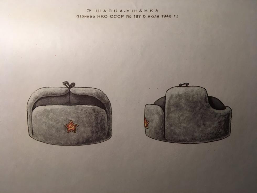 据187号命令的护耳帽      来源:rg.ru
