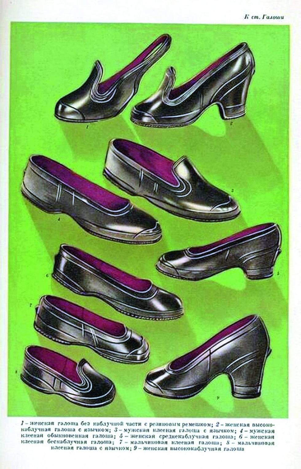 各种花色品种的套鞋。1956-1961年 / 俄罗斯报社
