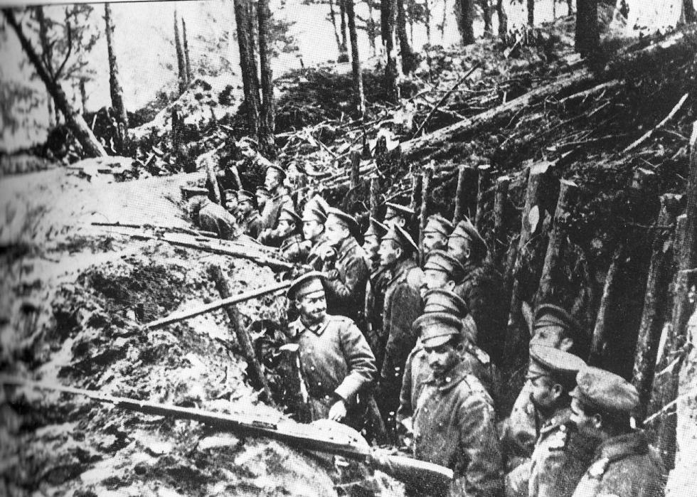 俄罗斯军队在萨利卡米什森林里。公开来源