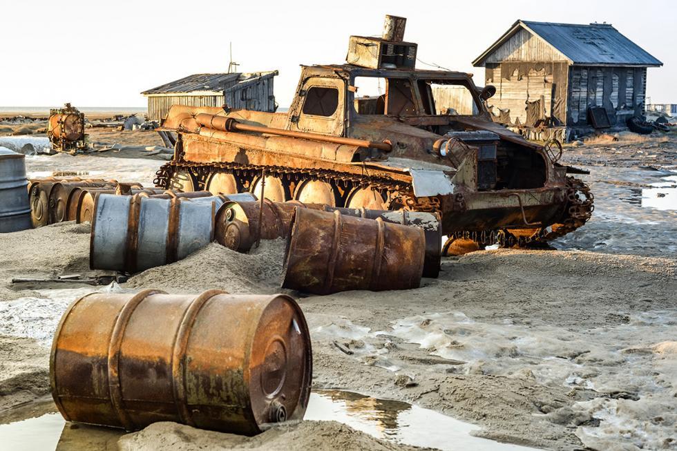 图片来源:Georgy Andreev/Green Arctic archive