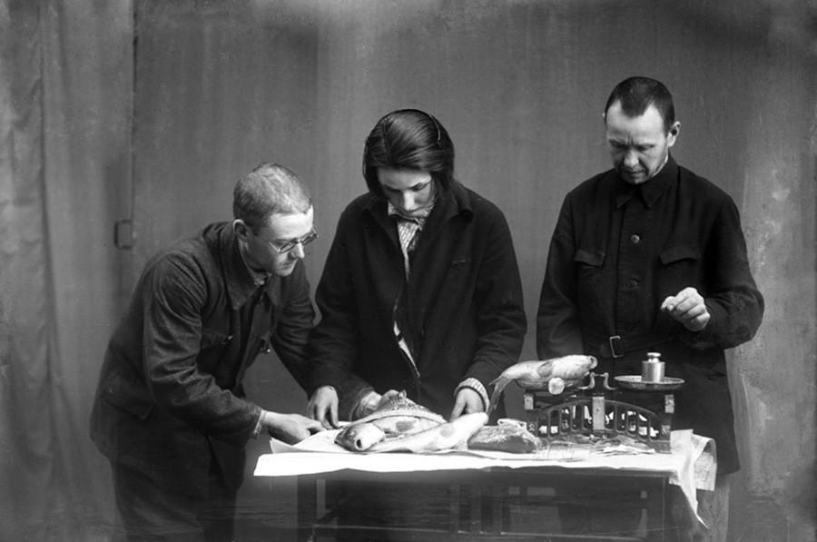 1931年,专家检查鱼质量。图片来源:Mikhail Smodor/Kostromskaya starina