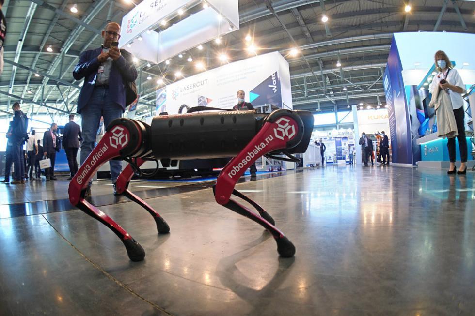 机器狗。图片来源:Tatyana Andreeva / 俄罗斯报